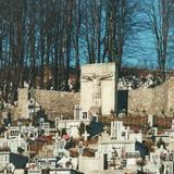 Image: War cemetery no. 190 Janowice